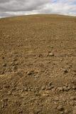 被耕种的土壤 库存照片