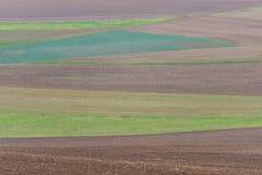 被耕种的土壤 图库摄影