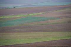 被耕种的土壤 免版税库存图片