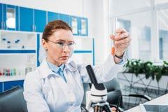 被聚焦的女性科学家画象在手中看有试剂的实验室外套的管 免版税库存照片