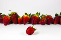 被聚焦的草莓有草莓背景  免版税库存照片