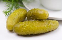 被腌制的嫩黄瓜 图库摄影