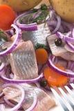 被腌制的鲱鱼 免版税库存照片