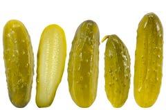 被腌制的黄瓜莳萝 免版税库存照片