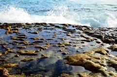 被腐蚀的砂岩岩石水池 免版税库存照片