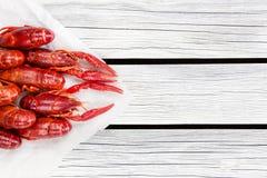 被蒸的小龙虾 红色煮沸了在白色木土气背景的小龙虾 土气样式 Y 免版税库存图片