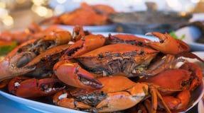被蒸的螃蟹堆许多在板材捉蟹 免版税库存图片
