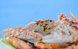 被蒸的螃蟹 库存图片