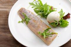 被蒸的鱼片用鸡蛋和沙拉 免版税库存图片
