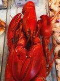被蒸的龙虾 库存照片