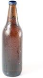 被装瓶的啤酒工艺 库存照片