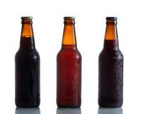 被装瓶的新鲜的冰镇啤酒 免版税库存图片