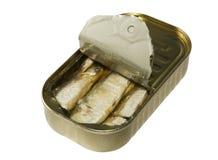 被装罐的沙丁鱼 免版税库存照片