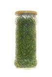 被装罐的绿色 免版税库存照片