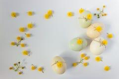 被装饰的复活节彩蛋 背景上色节假日红色黄色 2个所有时段小鸡概念复活节彩蛋开花草被绘的被安置的年轻人 库存图片