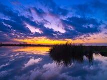 被覆盖的天空的反映 免版税图库摄影