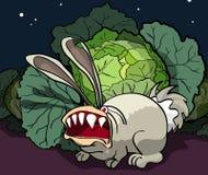 被触怒的兔子守卫圆白菜 免版税库存图片