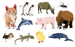 被设置的动物 免版税库存照片