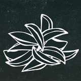 被设置的土豆楔子 快餐 隔绝在黑黑板背景 现实乱画动画片样式手拉的剪影 免版税库存照片