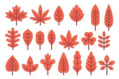 被设置的平的设计秋天叶子形状 库存图片