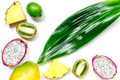 被设置的异乎寻常的果子 Dragonfruit、菠萝、芒果、石灰和猕猴桃在白色背景顶视图 库存图片