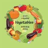被设置的手拉的eco菜 与水彩作用的剪影 免版税库存图片