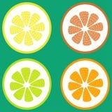 被设置的柑橘水果 免版税库存照片