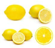 被设置的柠檬 库存图片