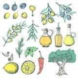 被设置的橄榄色的产品ans补充 免版税库存照片