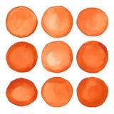 被设置的水彩胡萝卜色橙色圈子 免版税图库摄影