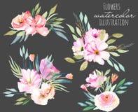 被设置的水彩领域康乃馨,玫瑰色和绿色分支花束 库存图片