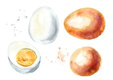 被设置的煮沸的鸡蛋 水彩手拉的例证,隔绝在白色背景 库存图片