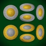 被设置的硬币 皇族释放例证