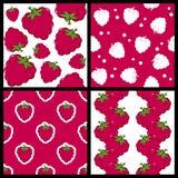 被设置的莓无缝的样式 免版税库存图片