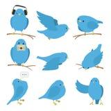 被设置的蓝色鸟 向量例证