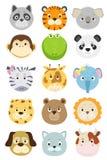 被设置的逗人喜爱的动画片动物面孔 免版税库存图片