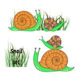 被设置的逗人喜爱的动画片蜗牛 库存照片