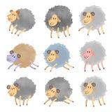 被设置的逗人喜爱的水彩绵羊 免版税库存照片