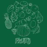 被设置的集合手拉的果子和莓果象 汇集在装饰减速火箭的剪影样式的农产品餐馆菜单的,市场 向量例证
