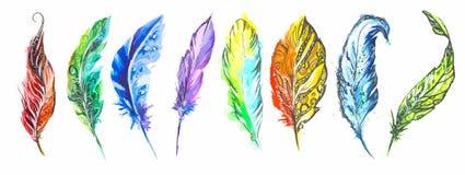 被设置的水彩五颜六色的羽毛 库存例证
