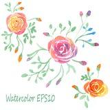 被设置的水彩花 那里8朵添加黑色图画eps格式徒手画的光栅玫瑰跟踪向量版本白色 向量例证