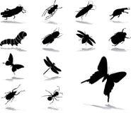 被设置的37只图标昆虫 库存照片