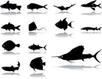 被设置的42个鱼图标 免版税库存图片