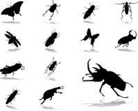被设置的55只图标昆虫 免版税库存照片