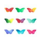 被设置被隔绝的水彩蝴蝶 免版税图库摄影