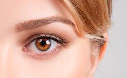被设色的背景秀丽蓝色概念容器装饰性的深度详细资料域充分的仿效宏观自然超出珍珠浅天空 美丽的女性棕色眼睛 免版税库存照片