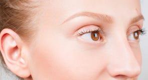 被设色的背景秀丽蓝色概念容器装饰性的深度详细资料域充分的仿效宏观自然超出珍珠浅天空 美丽的女性棕色眼睛 图库摄影
