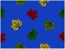 被设计的叶子的各种各样的颜色在蓝色背景的 库存例证