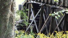 被转动在一个被保存的段磨房的一个老水轮 影视素材