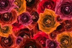 被过滤的玫瑰色花背景混合拼贴画  免版税库存照片
